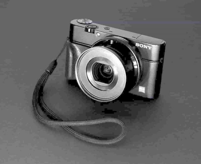 Sony RX100 mk1の画像