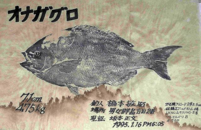 71㎝オナガの魚拓~2