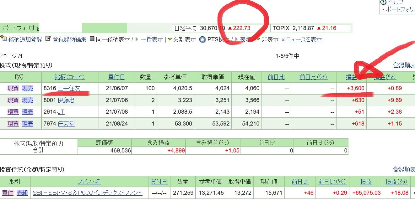 kabu_mitsui_sumi_0915_1.jpg