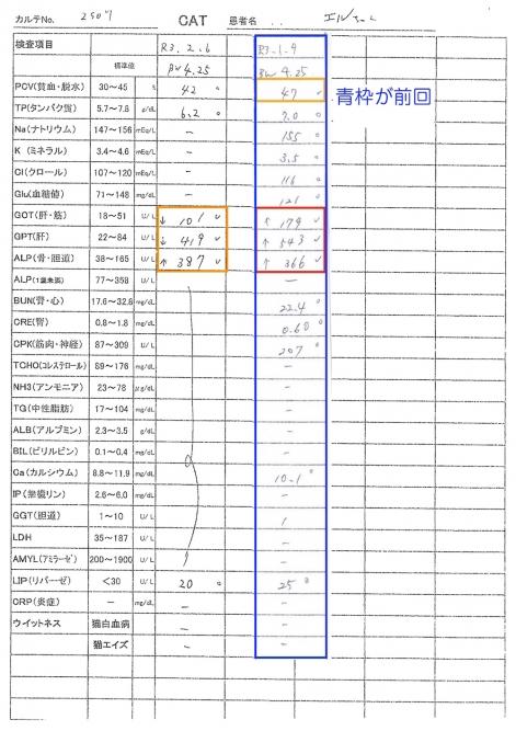 エル血液検査結果20210206