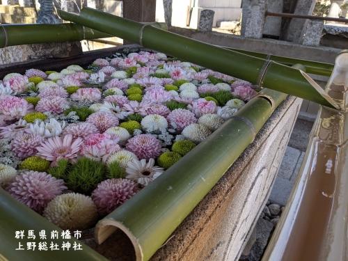 20210303群馬県前橋市、上野総社神社5