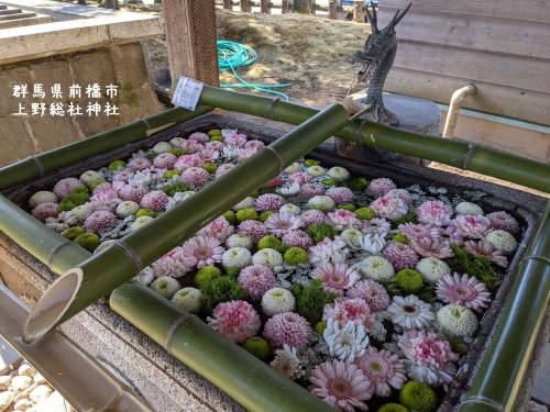 20210303群馬県前橋市、上野総社神社6