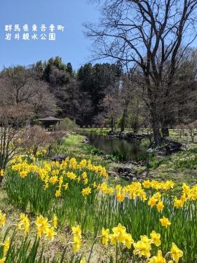 20210407群馬県東吾妻町、岩井親水公園10
