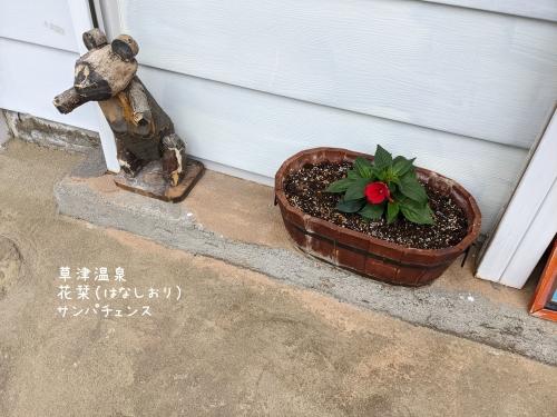 20210513草津温泉カフェ花栞(はなしおり)サンパチェンス
