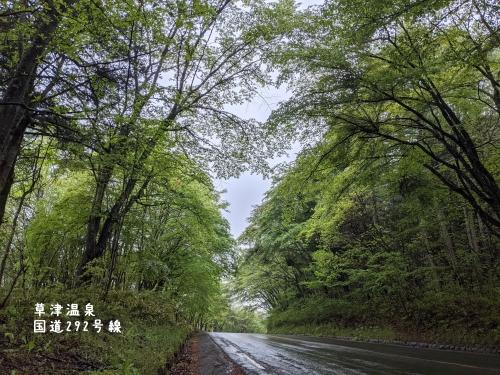 20210518群馬県草津町、草津温泉・新緑の国道292号線1
