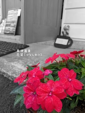 20210727草津温泉カフェ花栞(はなしおり)サンパチェンス