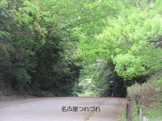 4・18緑地3