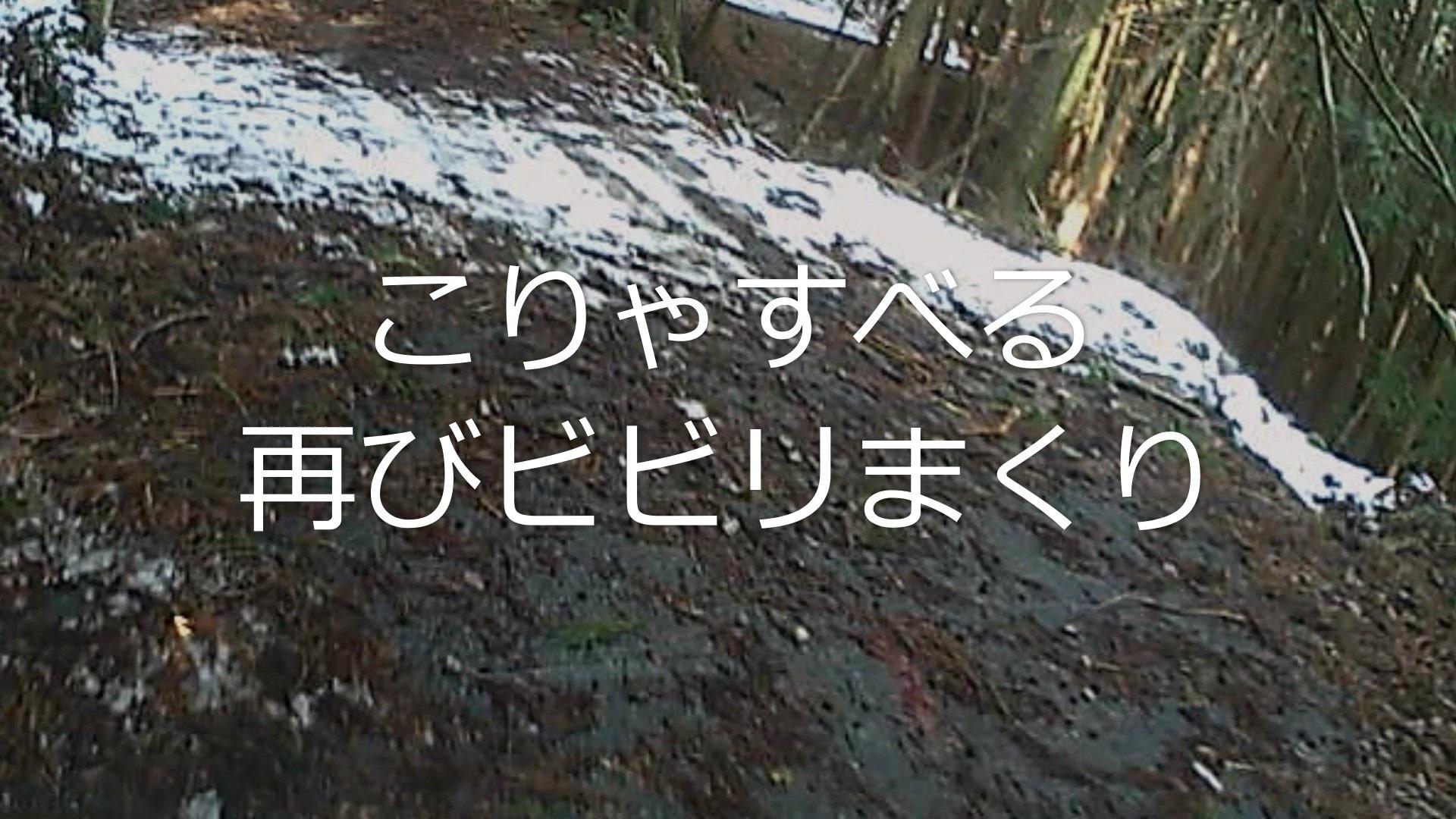 ビデオ12
