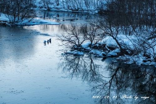 2021-0228Cold river_DSC7928