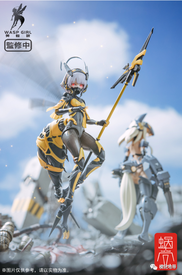 S428_WASP_GIRL_Snall_Shell_003.png