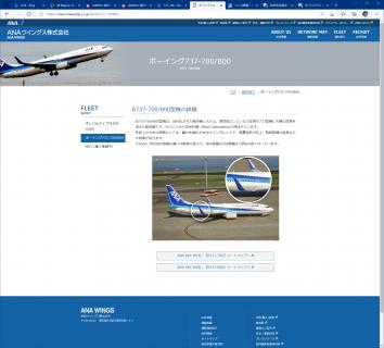 ana wings 737