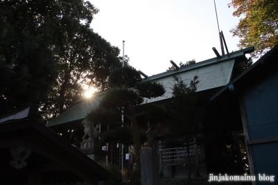 氷川神社  入間市高倉11