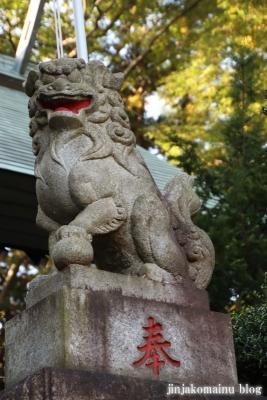 氷川神社  入間市高倉8