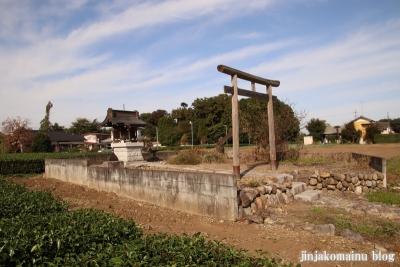 笹井稲荷神社  狭山市大字笹井1
