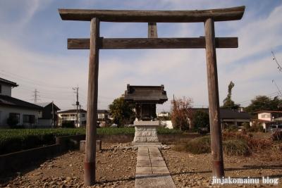 笹井稲荷神社  狭山市大字笹井2