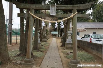 阿波洲神社  西東京市新町3