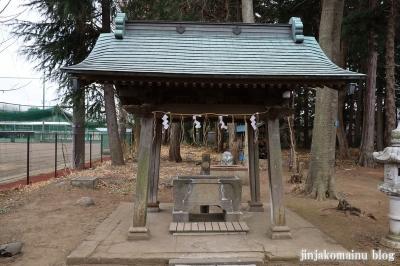 阿波洲神社  西東京市新町7