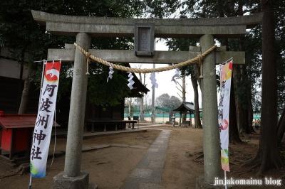 阿波洲神社  西東京市新町13