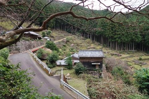 2020-11 熊野 (125)