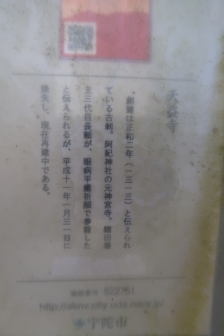 2021-3 宇陀桜 (39)