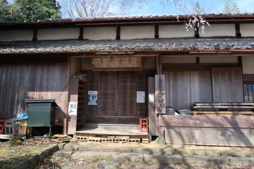 2021-3 宇陀桜 (31)