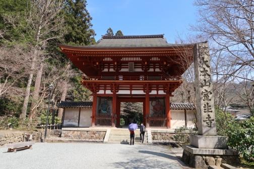 2021-3 宇陀桜 (113)