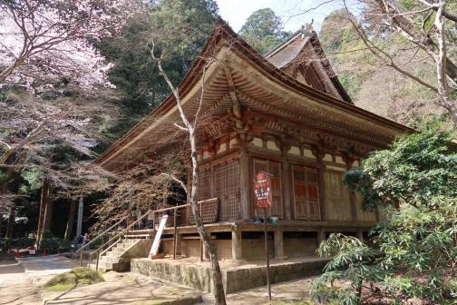 2021-3 宇陀桜 (123)