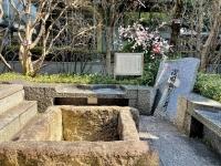 浅岡飯たきの井