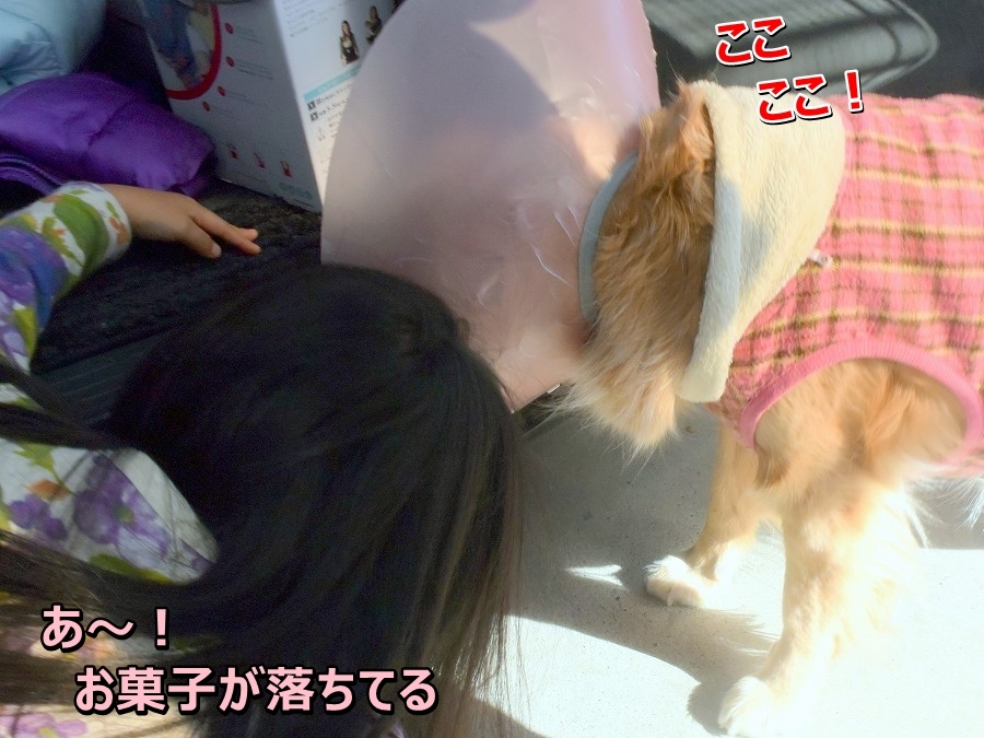 DSC_2432ア~お菓子
