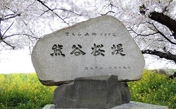 3熊谷桜堤石碑