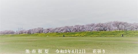 熊谷桜堤123 -