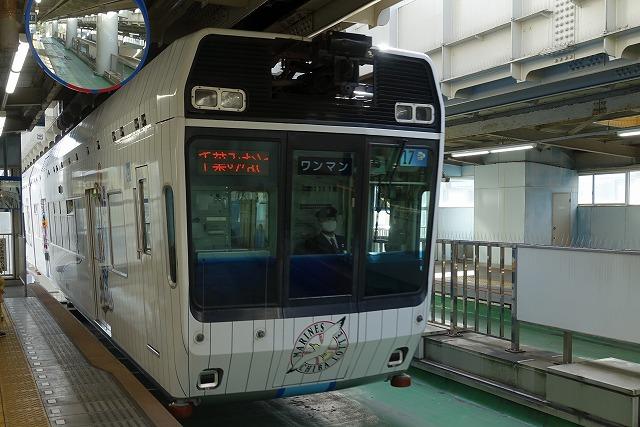 chibatoshi2101.jpg