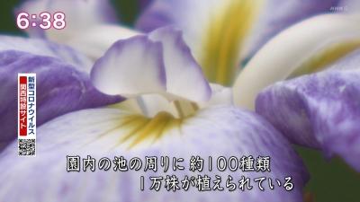 20210602-193901-145.jpg