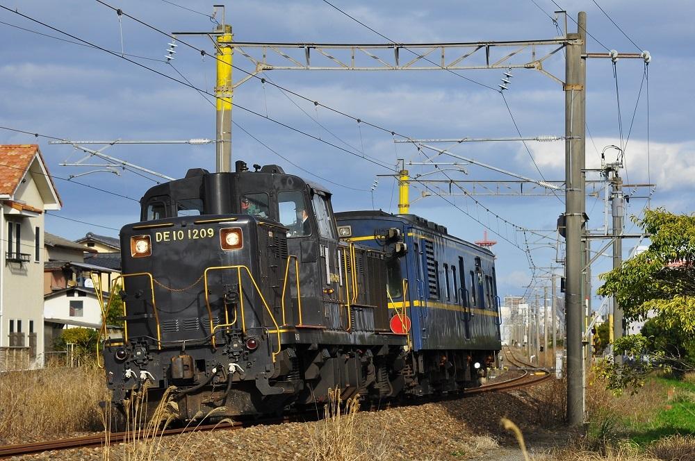 DSC_1350 (2)-1