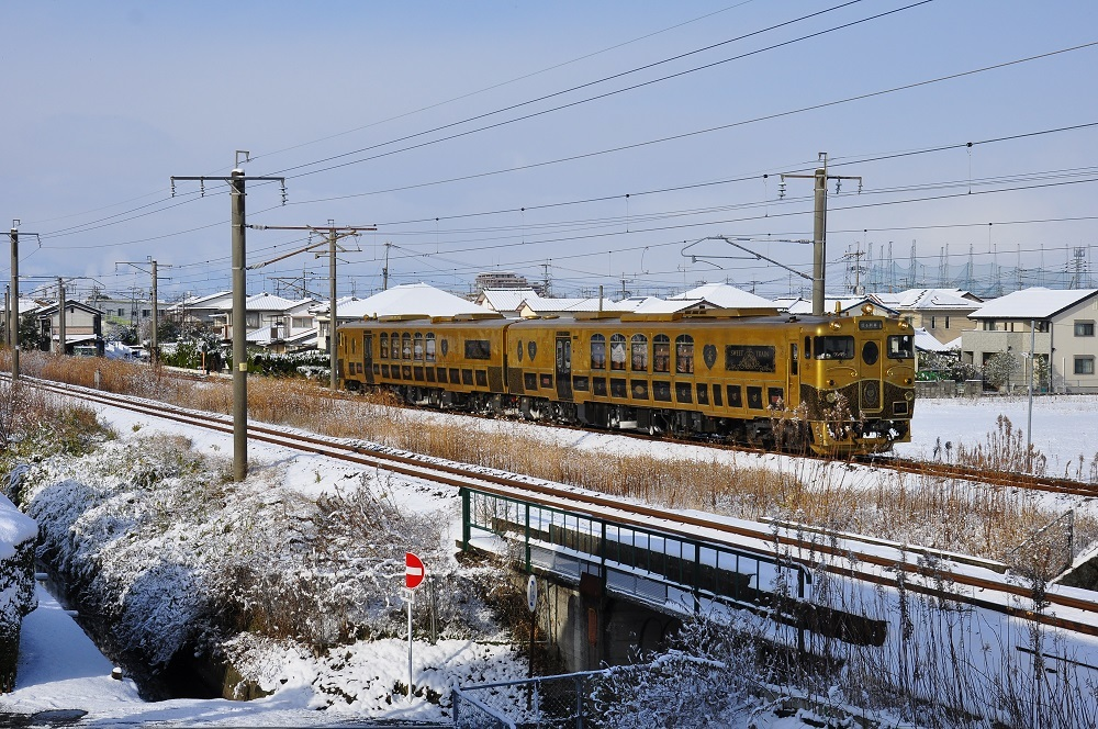 DSC_0727-1.jpg