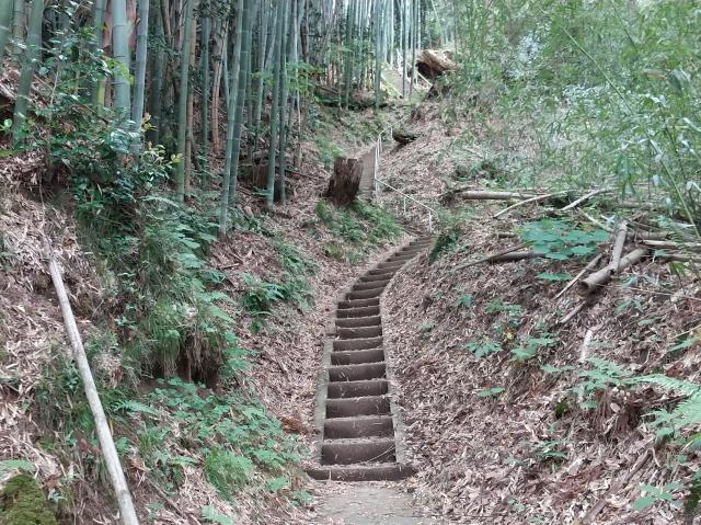 210608階段