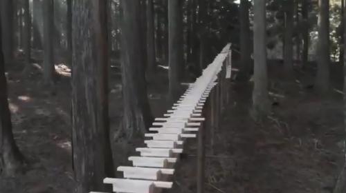 [韓国の反応]九州の森に設置された「森の木琴」に韓国人も感動[韓国ネット民]