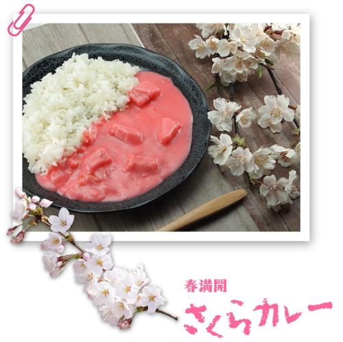 [韓国の反応]日本で販売されているあまりにも奇抜な色のカレーに韓国人も興味津々[韓国ネット民]