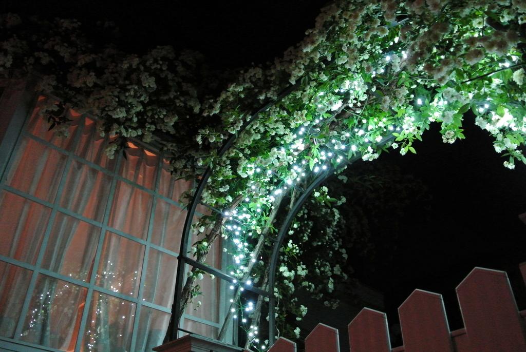 夜のクラヴィアハウス ライティングできれい