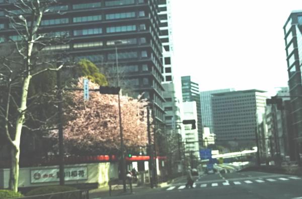 akasaka-toyokawa.png