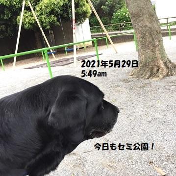 202105291.jpg