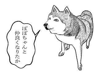 イラスト8犬