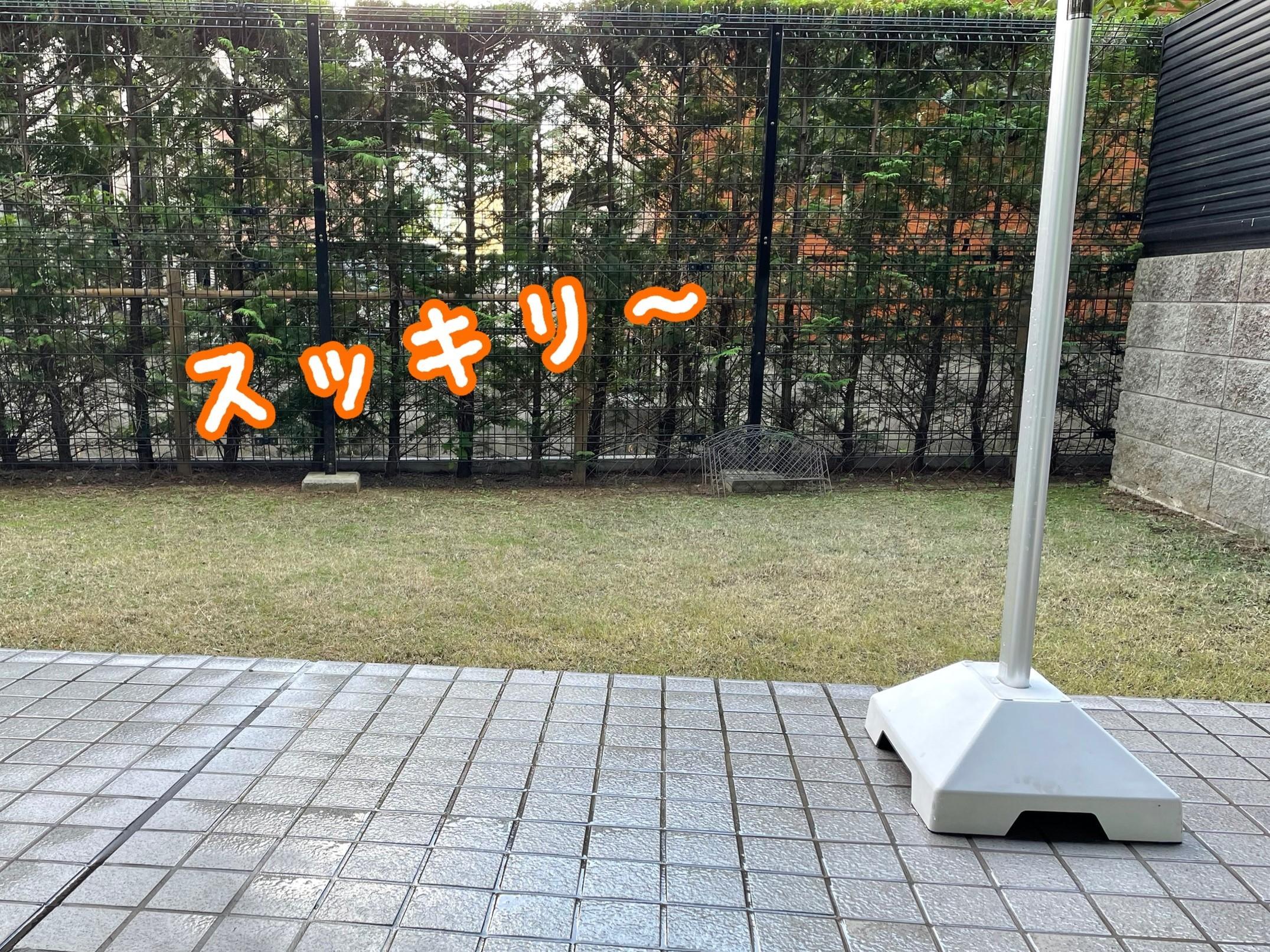 IMG_3256 (2)