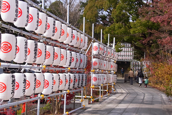正月の提灯が飾られた二宮神社入り口