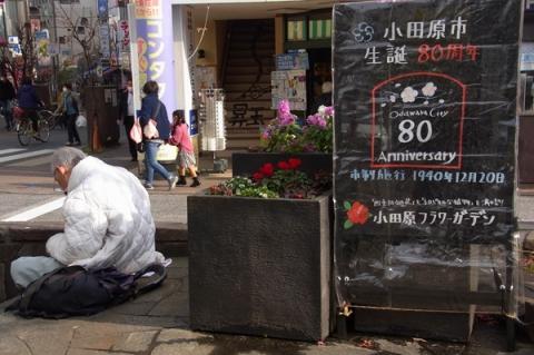 小田原市市制施行80周年を伝える看板