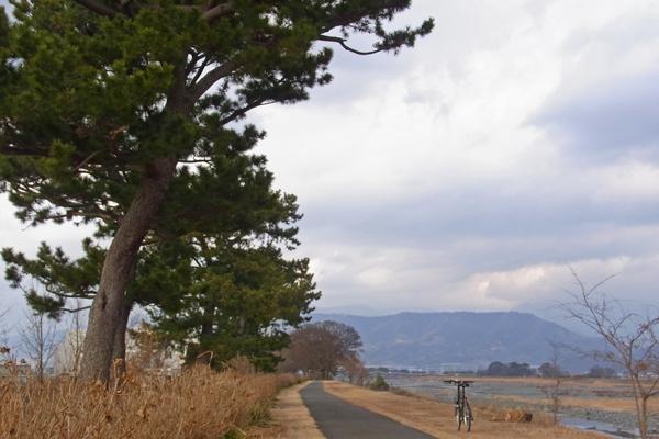 酒匂川サイクリングコースのラレーRSM