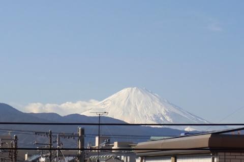 真っ白に冠雪した富士山
