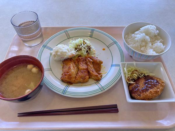 小田原市役所食堂の日替わりランチ