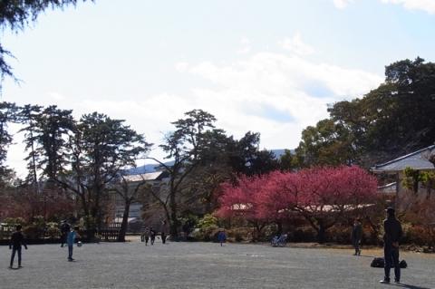 小田原城址公園二の丸広場