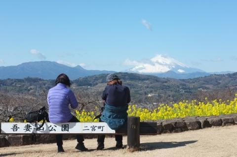二宮吾妻山公園から富士山を望む